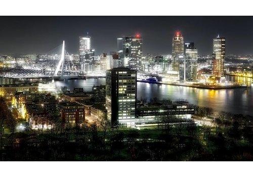 Ben Kleyn Rotterdam Shine