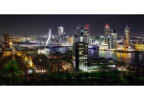 Ben Kleyn The lights of Rotterdam
