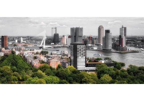 Ben Kleyn The buildings of Rotterdam