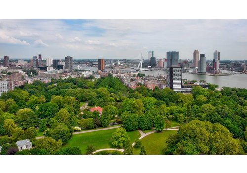 Ben Kleyn Green Rotterdam