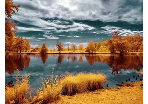 Majolan's Park Reflections II