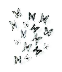 Chrysalis Vlinders Zwart