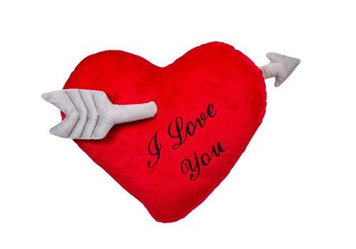 Hartenkussen I Love You met pijl 60cm