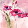 Pink Flower II