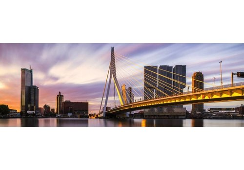 Rotterdam Strokes of Sunlight Panorama