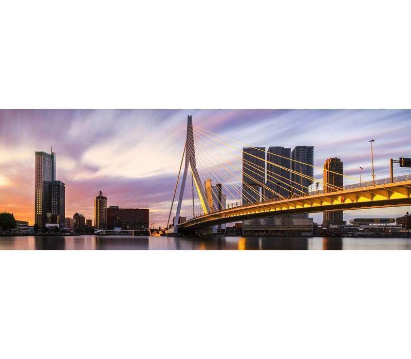 Rotterdam Strokes of Sunlight Panorama