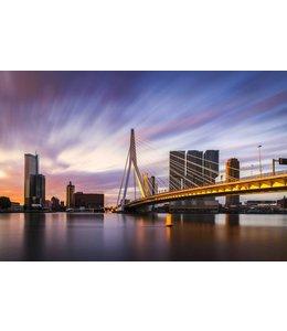Rotterdam Strokes of Sunlight