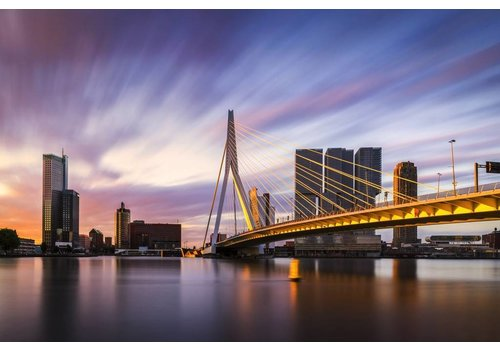Vincent Fennis Rotterdam Strokes of Sunlight