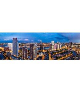 Uitzicht op Rotterdam Zuid