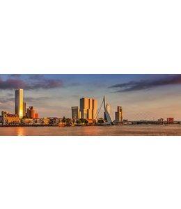 Hannah Anthonysz Rotterdamse Maaskade