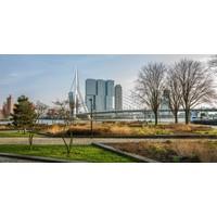 De tuin van Rotterdam
