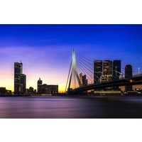 50 Shades of Rotterdam