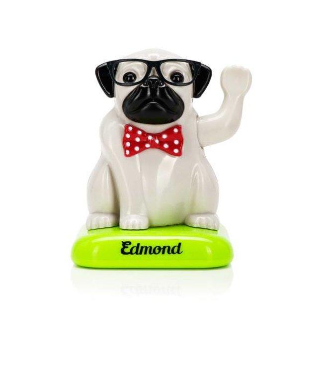 Cortina Edmond the solar pug