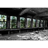 Cristallerie window