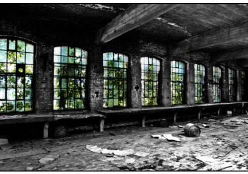 Steven Dijkshoorn Cristallerie window
