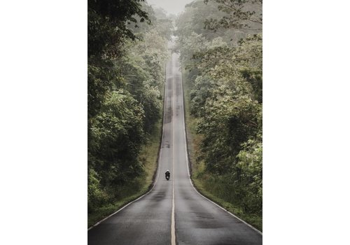 Long road 50x70