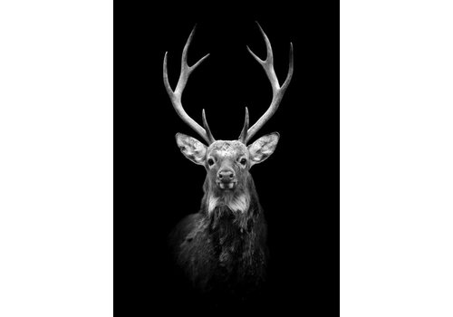 cre8design Black deer 30x40