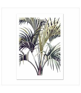 Leo La Douce Artprint A4 - Wild Palm