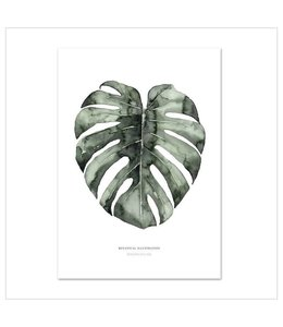 Leo La Douce Artprint A2 - Urban Monstera