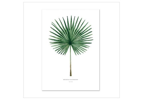 Leo La Douce Artprint A4 - Fan Palm
