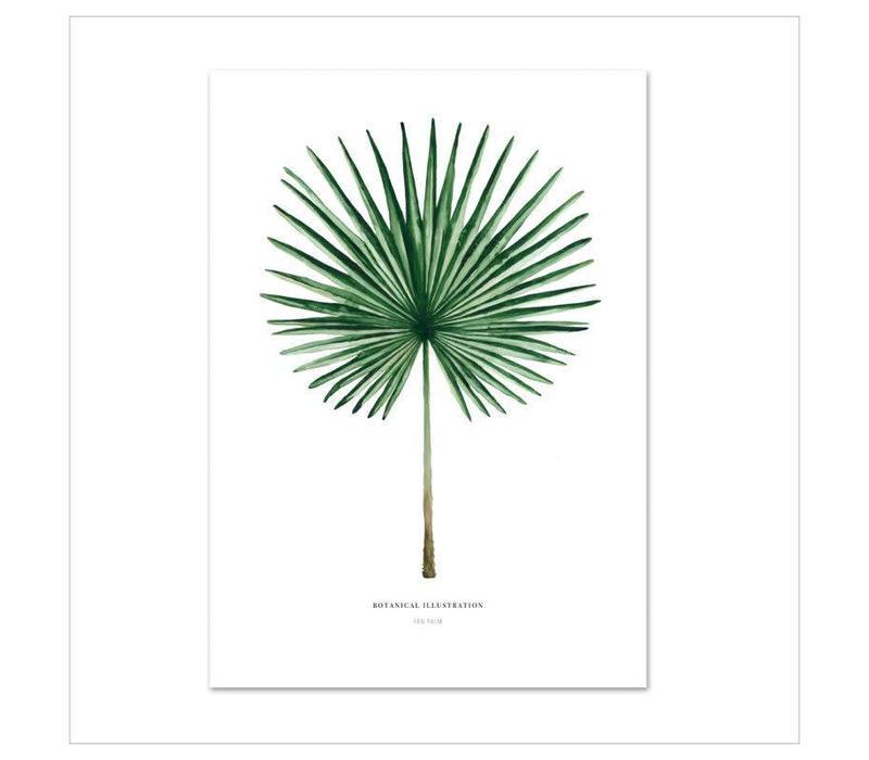 Artprint A3 - Fan Palm