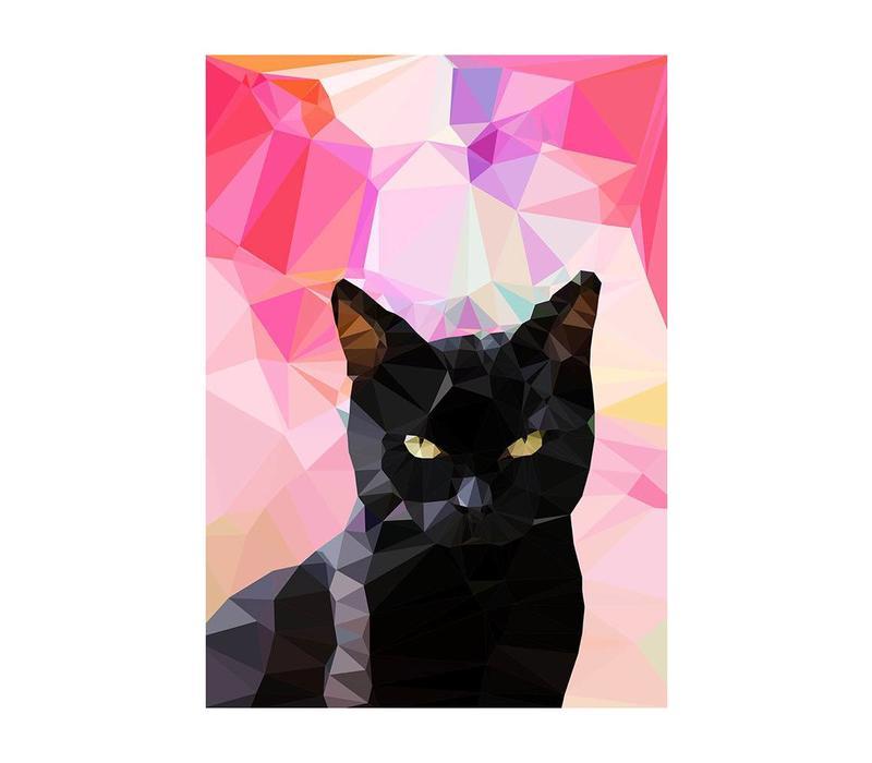 Black Cat A3
