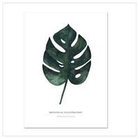 Artprint A3 - monstera deliciosa