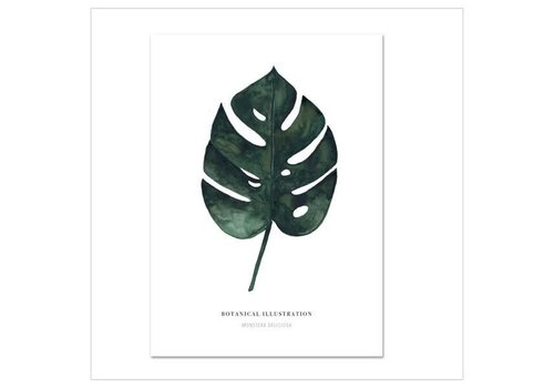 Leo La Douce Artprint A3 - monstera deliciosa