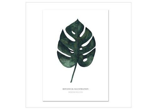 Leo La Douce Artprint A3 - monstera deliciosa