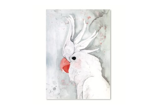 Leo La Douce Artprint A3 - White Kakadu