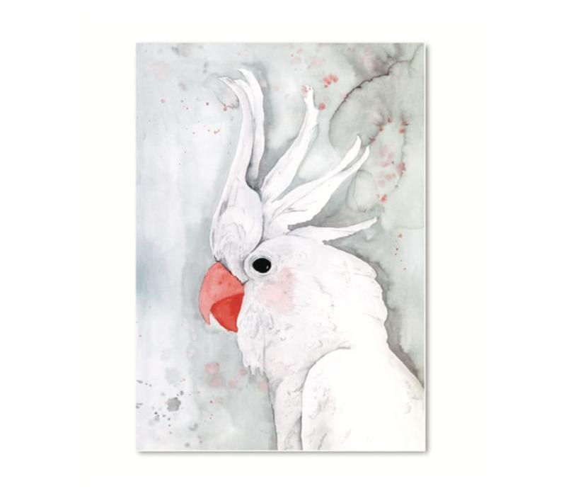 Artprint A3 - White Kakadu