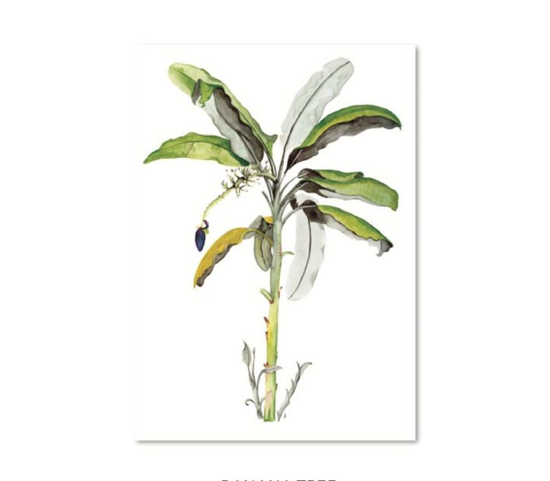 Artprint A3 - Banana tree