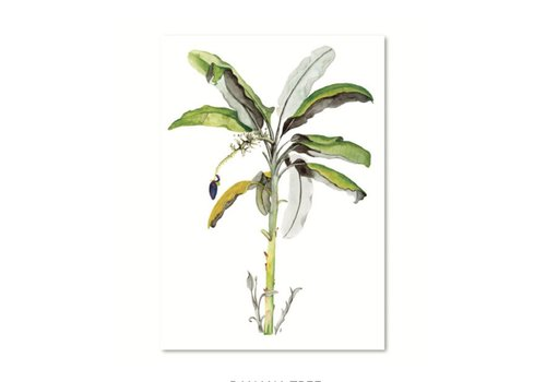 Leo La Douce Artprint A4 - Banana tree