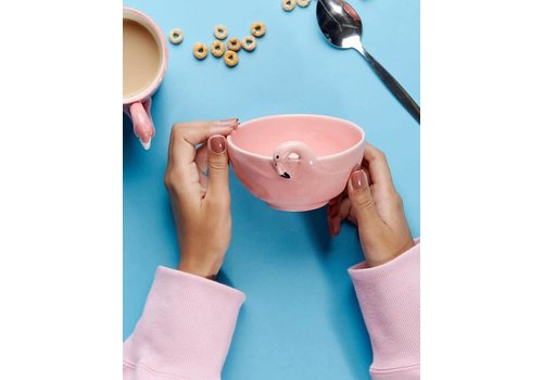 Sass & Belle Tropical Flamingo bowl