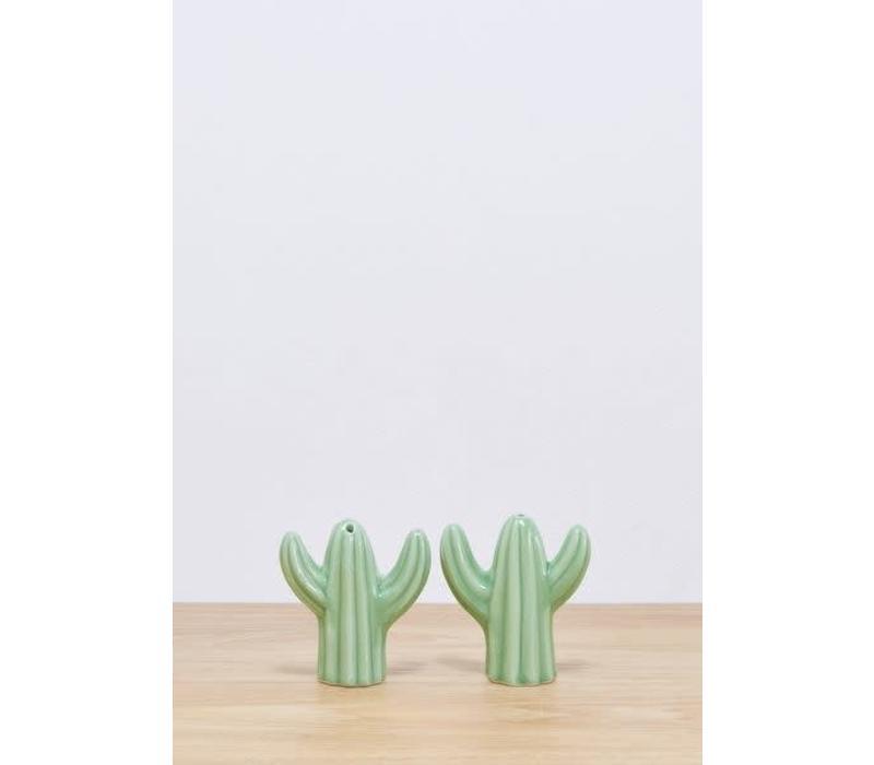 Peper en zout stel cactus