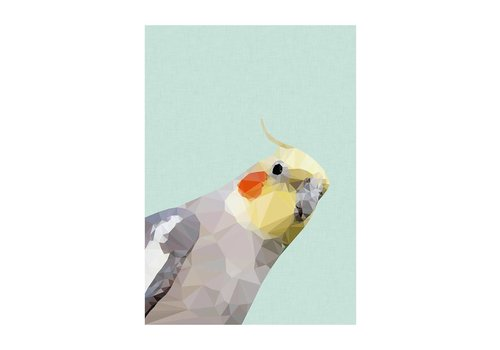 East End Prints Cockatiel A3