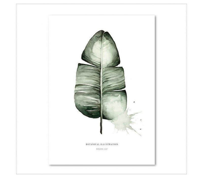 Artprint 50x70 - Banana leaf