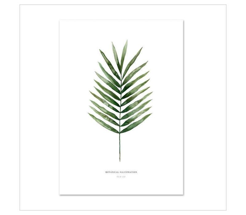 Artprint 50x70 - Palm leaf