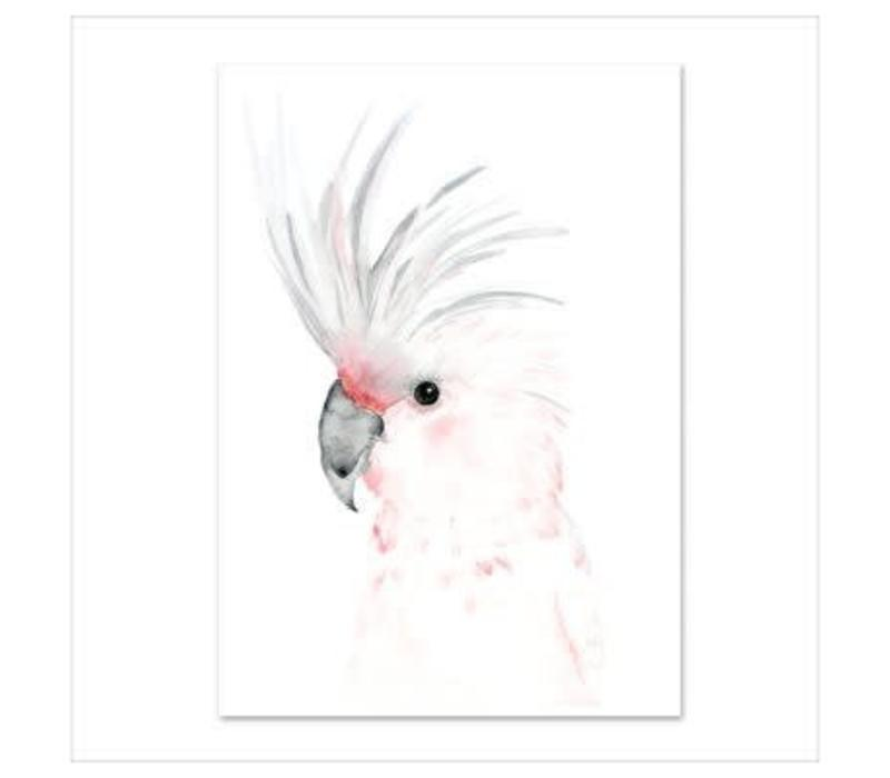 Artprint A4 - Kakadu
