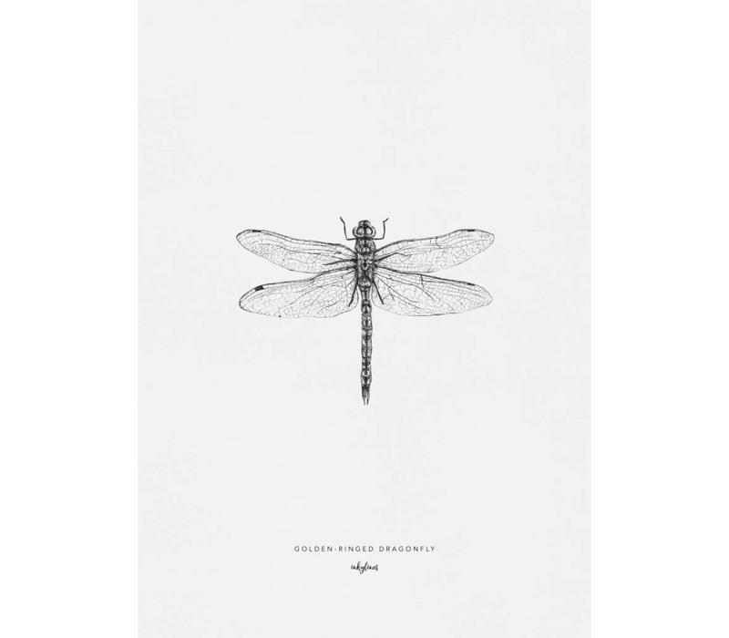 Bronlibel 10x15