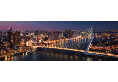 Vincent Fennis Metropolis Panorama
