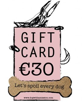 Giftcard €30