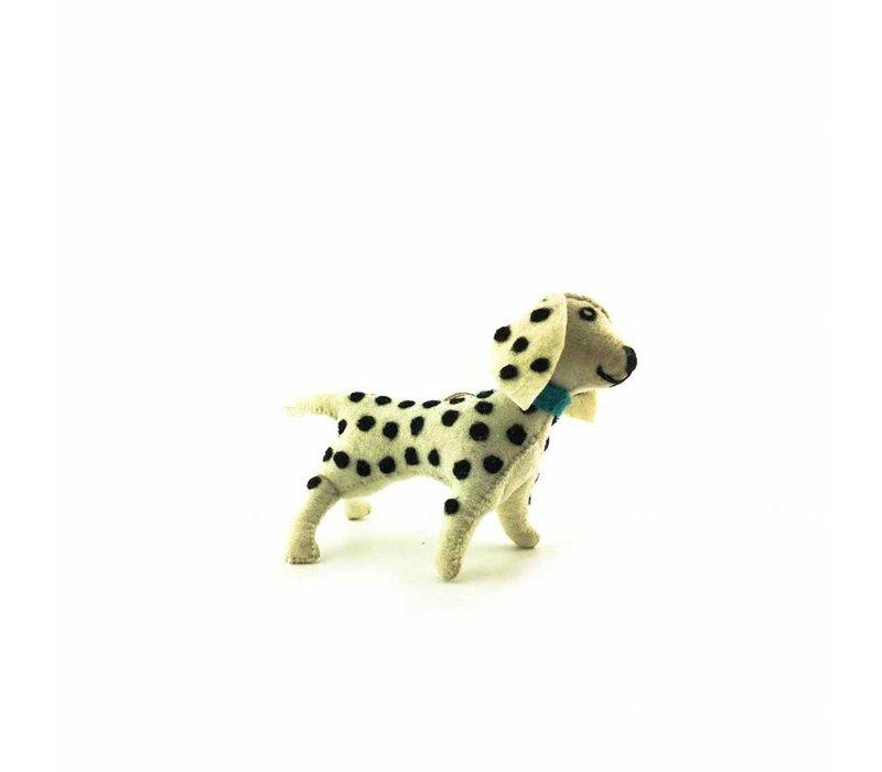 Dotty Doggy