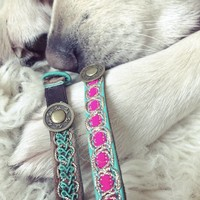 Cat collar Tommy
