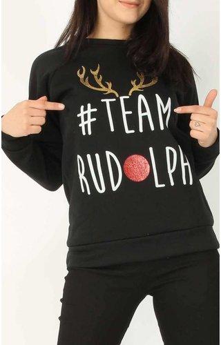 *Kersttrui Team Rudolph (Maat L)