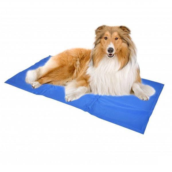 cooling mat for dogs petsgifts. Black Bedroom Furniture Sets. Home Design Ideas
