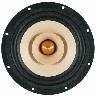 """Tang Band W8-1772 8"""" Neodymium Full Range Driver"""