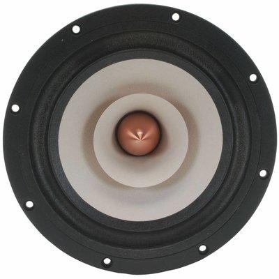 """Tang Band W8-1808 8"""" Neodymium Full Range Driver"""