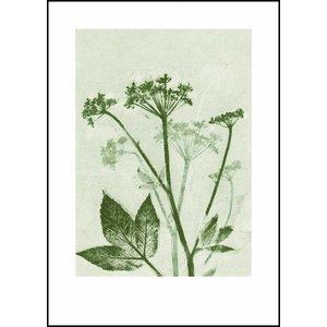 Pernille Folcarelli print groen zevenblad