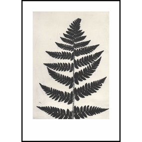 Pernille Folcarelli print zwarte varen